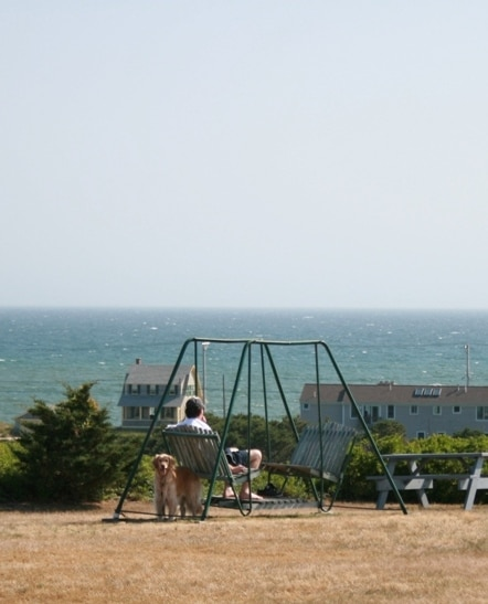 View Man and Dog Swing
